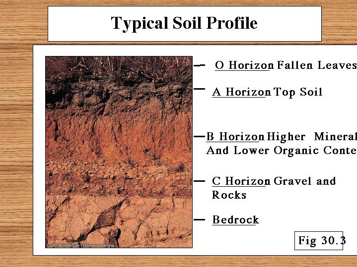 Desert formation diagram desert get free image about for Soil profile video